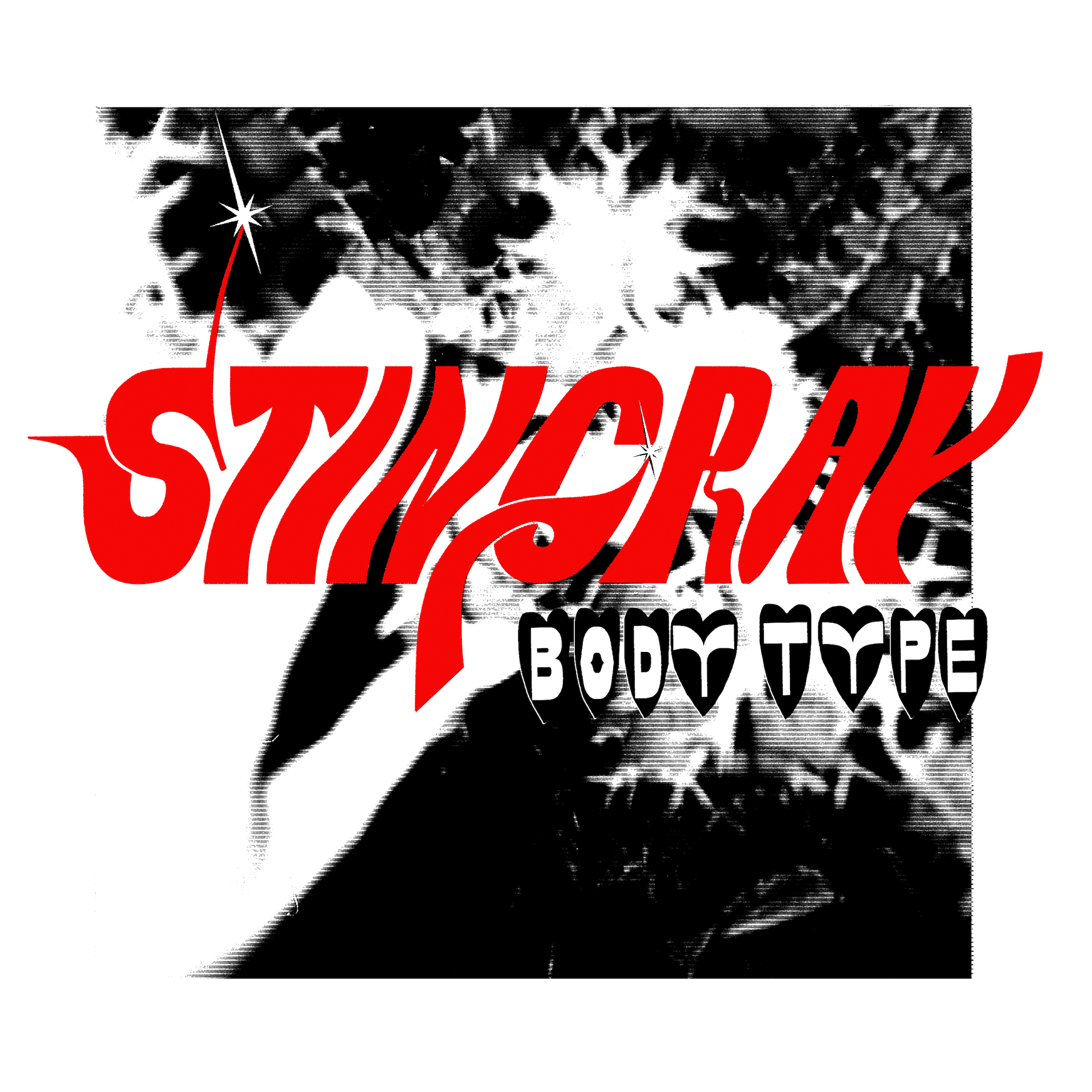 Body Type_Stingray